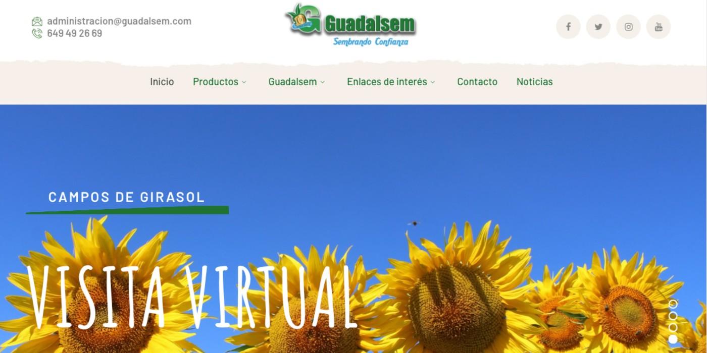 Página web Guadalsem